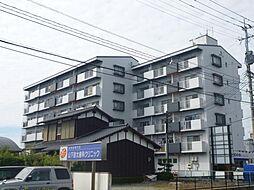 諏訪野ビル[1階]の外観