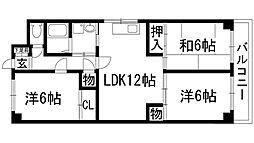 兵庫県伊丹市中野北4丁目の賃貸マンションの間取り