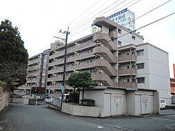 新栄二日市ハイツ[407号室]の外観