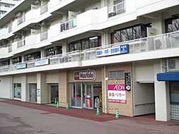 パークアベニュー藤ノ森[302号室]の外観