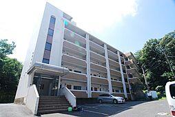 井堀ハイツ[4階]の外観