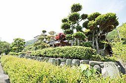[一戸建] 岡山県備前市日生町寒河 の賃貸【/】の外観