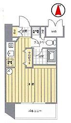 シンシア白金高輪[6階]の間取り