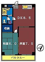 ペガサス三咲[305号室]の間取り