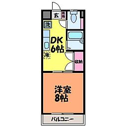 愛媛県松山市辻町の賃貸マンションの間取り