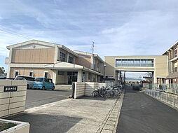 津島市立藤浪中学校まで300m
