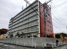 渋谷コート3号館[304号室]の外観
