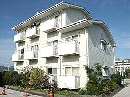 ハイツ長井[1階]の外観