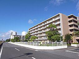 千葉県市原市八幡海岸通の賃貸マンションの外観