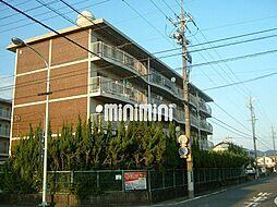 コーポ岳美A[4階]の外観