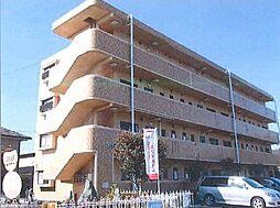 セピアコート寿[4階]の外観