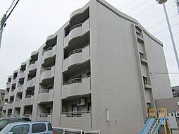 第三葵マンション[1階]の外観