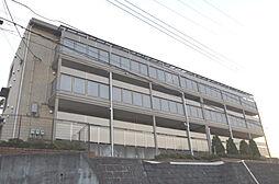 神奈川県横浜市旭区善部町の賃貸アパートの外観