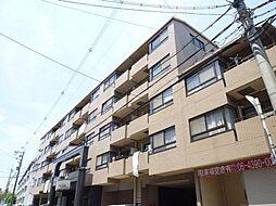 北大阪急行電鉄 桃山台駅 徒歩8分の賃貸マンション