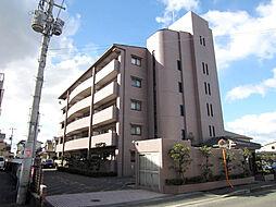 コスモス・ミソノ[203号室]の外観
