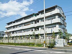 コーポヤマウチ[4階]の外観