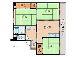 和歌山県橋本市学文路の賃貸マンションの間取り