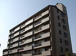 グランメール新生町[7階]の外観