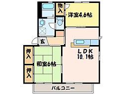 バリュージュ新須賀[2階]の間取り
