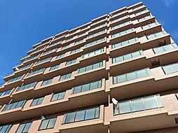 ウィンコート39[8階]の外観