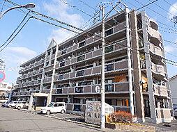 パセール青柳[4階]の外観