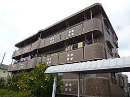 愛知県碧南市若宮町7丁目の賃貸マンションの外観