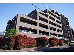 ドラゴンマンション亀有壱番館[1階]の外観