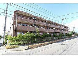 サンノーヴァ坂井東[3階]の外観