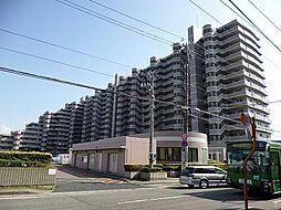プレステージ青山(909)[909号室]の外観