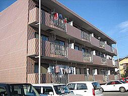 メイプルガーデンAB[B301号室]の外観
