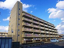 アブミパレスハセガワ[5階]の外観