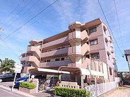 愛知県刈谷市大正町7丁目の賃貸マンションの外観
