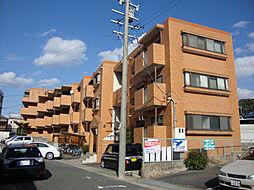 サンロイヤル曽根[3階]の外観