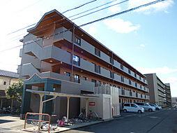 Chez-soi TATSUMI[1階]の外観