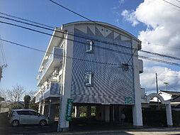 鹿児島県姶良市加治木町新富町の賃貸マンションの外観
