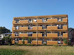 ANNEX M1[3階]の外観
