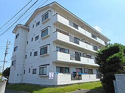 茨城県古河市中央町3丁目の賃貸マンションの外観