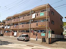 PADOLE2002[1階]の外観
