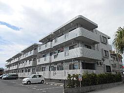 潮彩マンション東棟[1階]の外観