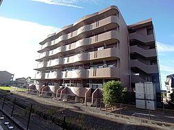 Broad Riffle[3階]の外観