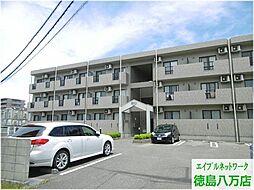 徳島県徳島市万代町6丁目の賃貸マンションの外観
