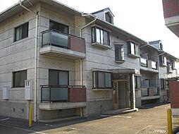 ヴィラージカミノキI・II[2階]の外観