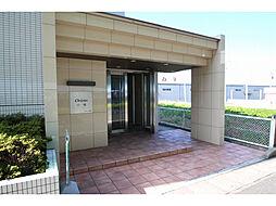 愛知県小牧市小木東1丁目の賃貸マンションの外観