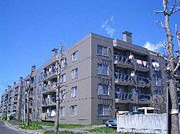 カムイ24B[2階]の外観