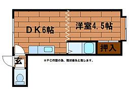オーガスタ澄川(旧シェンヴァイス岡田)[1階]の間取り