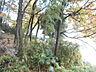その他,ワンルーム,面積15m2,賃料2.5万円,多摩都市モノレール 多摩動物公園駅 徒歩7分,多摩都市モノレール 中央大学・明星大学駅 徒歩15分,東京都日野市程久保6丁目