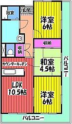 エステル和泉 6階3LDKの間取り