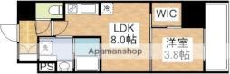 コンフォリア江坂 5階1LDKの間取り